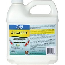 Algaefix 64 oz